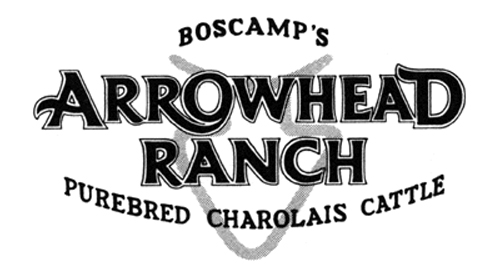 Arrowhead Ranch - Registered Charolais Bulls - Waelder, TX
